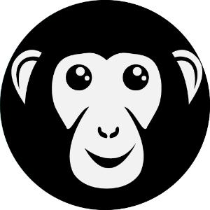 Bonoboz, Digital Marketing Company, Ahmedabad, India